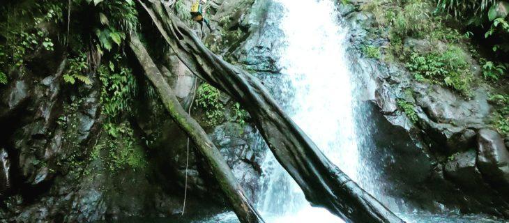 Rivière Noire Vauchelet